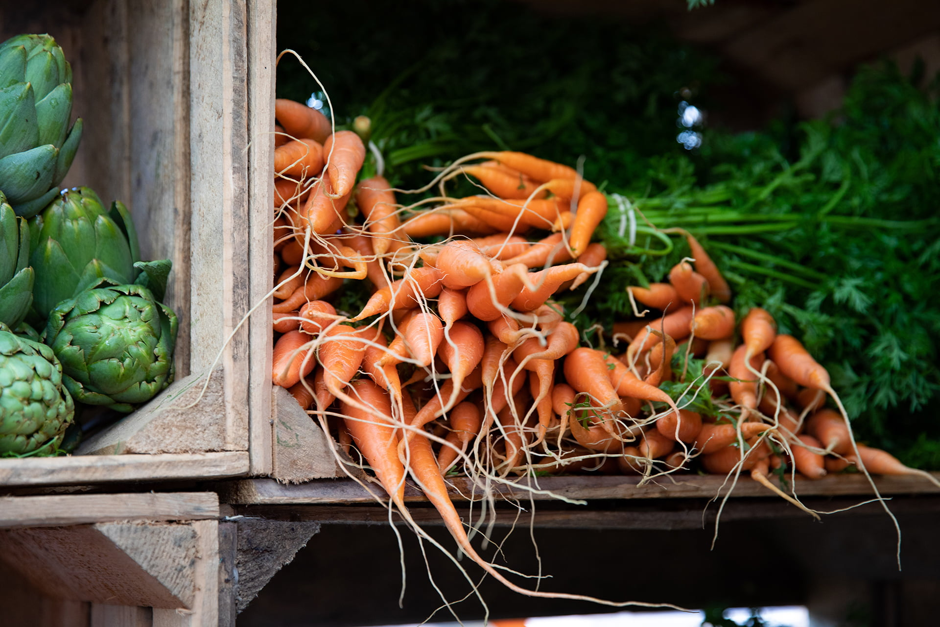Morötter i trälåda.